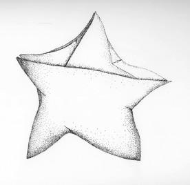 Origami Star I